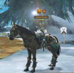My starter horse, Amaru. ^-^