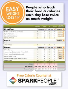 Free Calorie Counter -- By SparkPeople  This website has helped me out with my weight lose. I dont think I would have kept going or known what I was putting in my mouth if not for this and I love the little exercise videos they have if you have 9 min.. they have a workout or 12 min.. its great! Check it out! Carie-