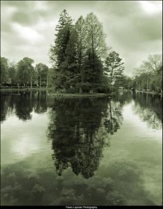 I love to photograph reflections. Please check out my website.  www.photopix.co.nz