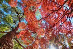Panoramio - Photos by Seima I > best