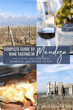 A complete guide the best wineries and three wine regions in Mendoza Argentina | Best Wine tours in Mendoza, hire a private driver in Mendoza to visit the best vineyards #Mendoza #Argentina #Malbec #WineTasting