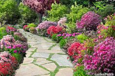 ~~~~bright day~~~~projects_descriptionthanks for the lovely background! Outdoor, Plants, Garden Pathway, Garden Plants, Perennial Garden, Perennials, Garden Planning Tool, Garden Planning, Garden Design