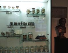 nice spot - Review of The Pharmacy History Collection, Cluj-Napoca, Romania… History Of Pharmacy, Romania, Trip Advisor, Photo Wall, Nice, Collection, Photograph, Nice France