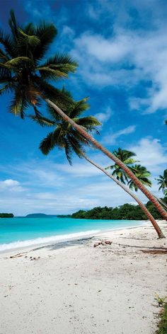 When you're ready, we look forward to booking your next Vanuatu holiday package. Browse our unbeatable Vanuatu holidays deals. We know travel - Flight Centre Big Island Hawaii, Island Beach, Small Island, Vanuatu, Papua Nova Guiné, Tropical Beach Resorts, Famous Places In France, Beach Pink, Seen