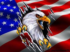 Patriotic Pictures, Eagle Pictures, I Love America, America Pride, Cool Car Drawings, Pencil Drawings, Eagle Drawing, Eagle Wallpaper, Patriotic Tattoos