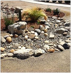xeriscape with dry creek bed Dry Riverbed Landscaping, Landscaping Company, Landscaping With Rocks, Outdoor Landscaping, Front Yard Landscaping, Outdoor Gardens, Landscaping Ideas, River Rock Landscaping, Florida Landscaping