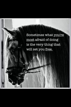 The most important role of equestrian clothing is for security Although horses can be trained they can be unforeseeable when provoked. Riders are susceptible while riding and handling horses, espec… Inspirational Horse Quotes, Motivational Quotes, Great Quotes, Me Quotes, Scary Quotes, Daily Quotes, Rodeo Quotes, Horse Riding Quotes, Horse Jumping Quotes
