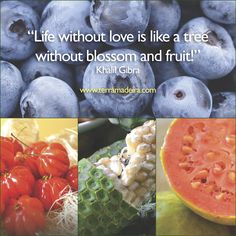 """""""Life without love is like a tree without blossom and fruit!"""", Khalil Gibra http://www.terramadeira.com #terramadeira"""