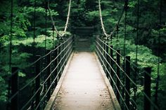 Reminds me of the bridge in the park back home. :)