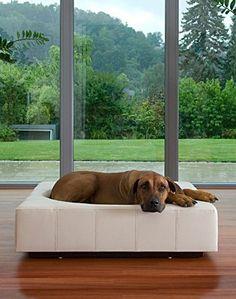 Een prachtig en zeer exclusief design hondenbed, geheel handgemaakt van leer.