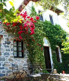 ntamouchari pelion Porches, Greek House, Old Street, Corfu, Old Buildings, Old City, Greek Islands, Homeland, Cities