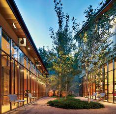 House in the Rockies, Renzo Piano // Courtyard, organic outcrop of green