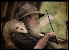 A fiddler and his possum...