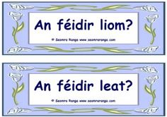 An féidir liom? / An féidir leat? Irish Language, European Languages, Wreck This Journal, Den, Ireland, Study, Posters, Activities, Teaching