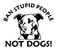 37 best truck shit images lifted trucks pickup trucks truck Lifted Jeep Cherokee XJ with 31s ban stupid pitbull vinyl decal pit pull sticker dog by jmplotter 4 00