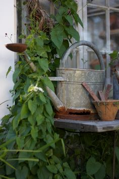 Garden bench and watering can Garden Care, Water Garden, Garden Pots, Garden Sheds, Woodlands Cottage, Cottage Garden Design, Cottage Gardens, Potting Sheds, Down On The Farm