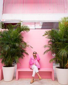Miami Museum of Ice Cream - Tour & Video!
