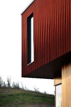 williamson chong house exterior cladding