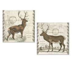 Rustic Regal Elk and Stag Set by Sue Schlabach; Cabin Lodge Decor; Two 12x12in Unframed Paper Posters #rusticcabindecor
