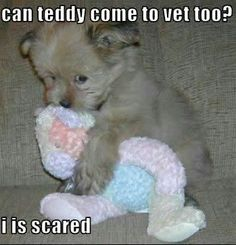 Aww!! Cutest thing ever!