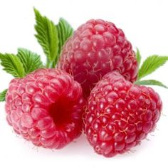 Raspberry Ketones are now added to a number of weight loss supplements. They are a natural and organic extract coming from the raspberry fruit, and are promoted as an effective resource for boosting the metabolism and promoting fat burning fitness Healthy Weight Loss, Weight Loss Tips, Healthy Food, Healthy Recipes, Superfood Recipes, Healthy Juices, Quick Recipes, Diet Recipes, Dessert Recipes