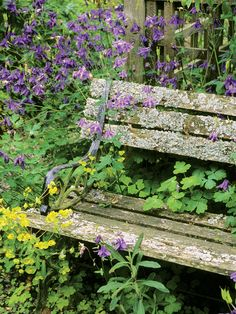 Wooden Furniture: Wooden garden furniture that weathers and ages well adds to the informal look of a cottage garden. From HGTV.com's Garden Galleries