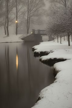 "sapphire1707: "" Path Lights II | by tedander | http://ift.tt/1usTMJy """