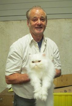 Hypnosis treatments are used to help actor Bill Murray work with his feline costar.