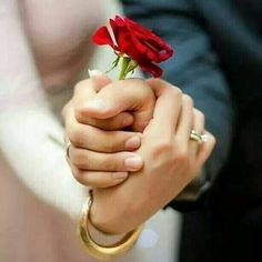Cute wedding photo idea: hold hands while placing a single red rose between the… Pre Wedding Photoshoot, Wedding Pics, Wedding Shoot, Wedding Couples, Wedding Day, Love Couple, Couple Shoot, Couple Dps, Romantic Couples