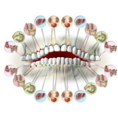 How Your Teeth Predict Different Organs Health! There is a link between the state of organs inside and teeth, like for example the upper and lower incisors a. Health Heal, Health And Wellness, Hand Reflexology, Acupressure Treatment, Tooth Pain, Body Organs, Alternative Health, Dental Health, Massage Therapy
