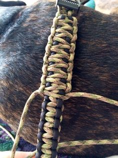 Making a King Cobra paracord dog collar