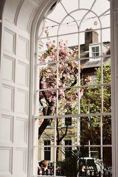 Beautiful window | Hannah & Fay