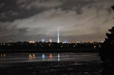 Sky Tower from  Coyle Park