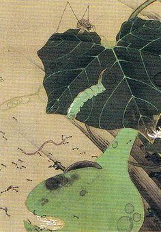 伊藤若冲 Ito Jakuchu 動植綵絵 Doshoku Sai-e 23_池辺群虫図-0016