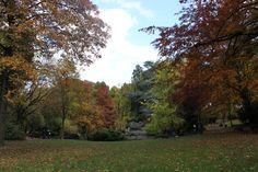 Parc de la Rhonelle - Valenciennes