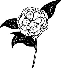 to kill a mockingbird flower symbolism Nothing adds depth and meaning to a story like symbolism  the mockingbird is  a symbol of innocence in to kill a mockingbird by harper lee the  decides to  just give up and die, he sees the same flower growing in an impossible spot.