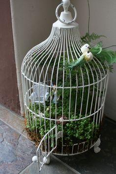 fairy garden in a bird cage