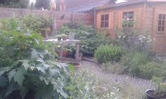 Lush patio garden