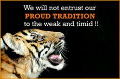 MASSILLON TIGERS Massillon Ohio, Football Usa, My Town, Tigers, Brene Brown, Sports Teams, Eye, Genealogy, Pride