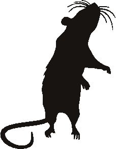 rat stencil. I'll project this on wood to make a giant one.
