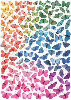 A myriad of butterflies, painted in watercolour. I designed this print with a nursery in mind - the rainbow palette stimulates an infant's perception of colour, and can be utilised as a colou. K Wallpaper, Butterfly Wallpaper, Butterfly Background, Bedroom Art, Nursery Art, Girls Bedroom, Textile Patterns, Print Patterns, Rainbow Palette