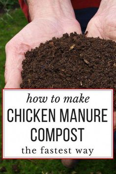 Composting Hacks How to make the BEST chicken manure compost, really quickly. Garden-ready in just 18 days! - Did you know you can compost chicken manure into good, garden-ready black gold.in just 18 days? Chicken Garden, Diy Chicken Coop, Chicken Feeders, Keeping Chickens, Raising Chickens, Pet Chickens, Backyard Farming, Chickens Backyard, Chickens In Garden