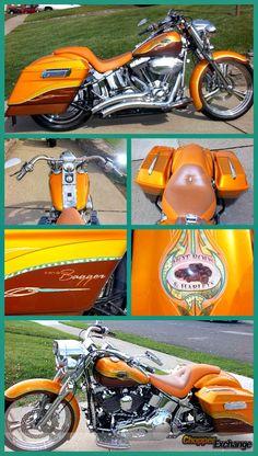 2001 Custom HarleyDavidson FLSTF Softail FatBoy Bagger .