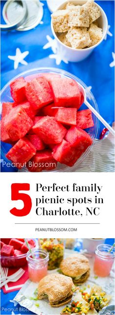Pack your picnic basket with this yummy menu and head to a perfect family friendly picnic spot in Charlotte, NC! This great list includes scenic spots that have just the right tables and setting for your kids to enjoy lunch and then play for a fun afternoon.