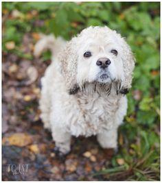 Mud face!