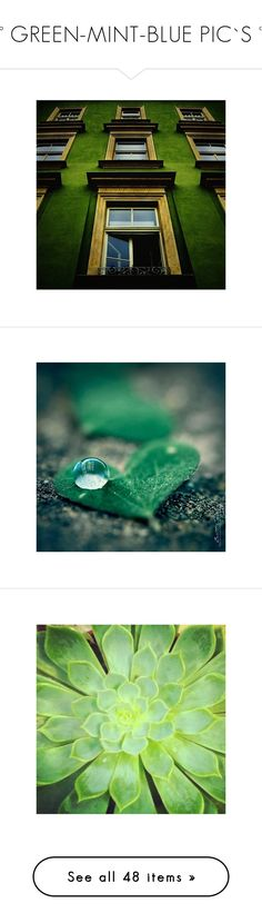 """""""°° GREEN-MINT-BLUE PIC`S °°"""" by dicabria ❤ liked on Polyvore featuring backgrounds, pictures, hearts, photos, photography, green, plants, fillers, patterns and photo"""