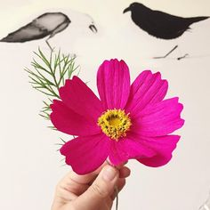 Never been much into making the few-petaled flowers, but the garden cosmos is a joy! #paperflowers #cosmos