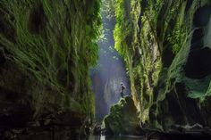 Photo by - Location: Claustral Canyon, The Blue Mountains, Australia Blue Mountains Australia, Destinations, Voyager Loin, Small Waterfall, All Nature, True Nature, Photos, Pictures, Surfers