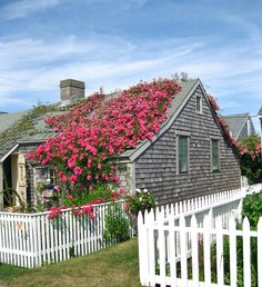Nantucket - renovated fisherman's cottage