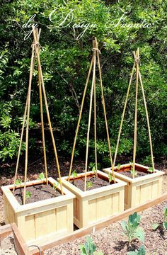 diy Design Fanatic: Finished Planter Boxes and Garden Update